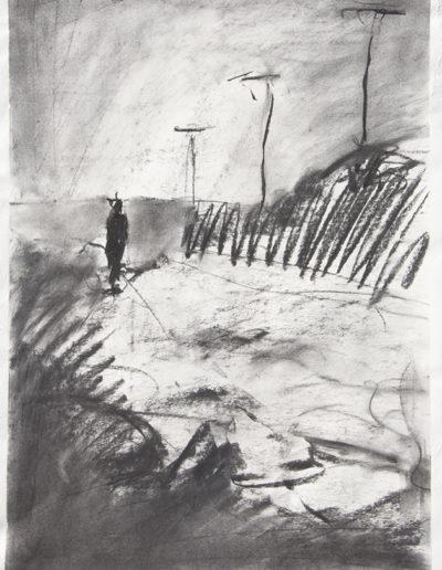 Vir Solo, 2013 fusaggine su carta, cm 55 x 40